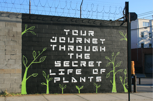 Your Journey Through The Secret Life Of Plants